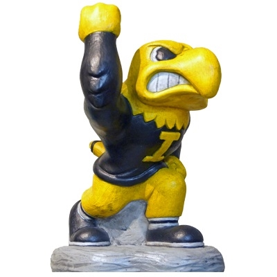 Iowa Herky College Mascot