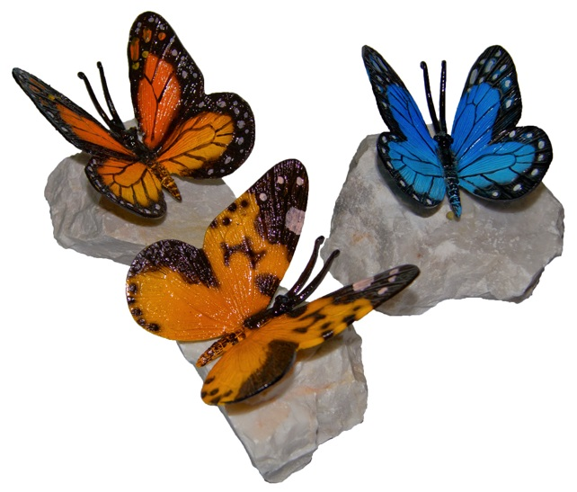 Butterfly Rocks Assortment (Case of 6)