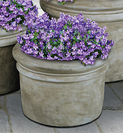 Small Rolled Rim Planter
