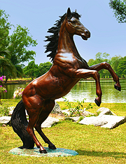 Rearing Stallion (Special Order Only)